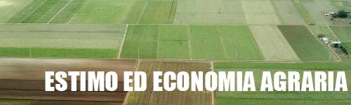 Estimo ed economia agraria
