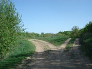 viabilità-rurale