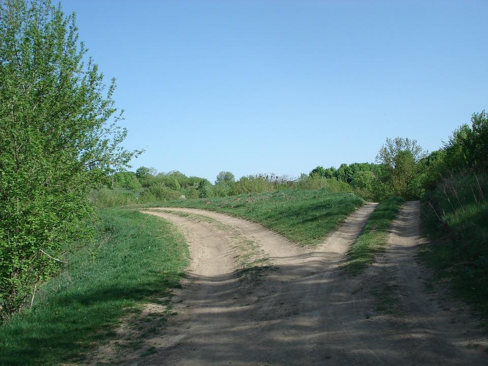 Bando per miglioramento della viabilità interaziendale e strade rurali per l'accesso ai terreni agricoli e forestali