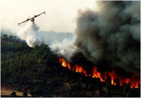 Sostegno alla prevenzione dei danni arrecati alle foreste da incendi, calamità naturali ed eventi catastrofici