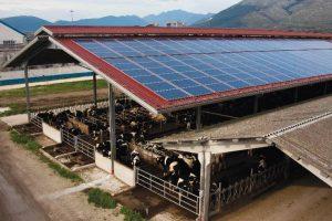 Investimenti nella creazione e nello sviluppo di impianti per la produzione di energia da fonti rinnovabili