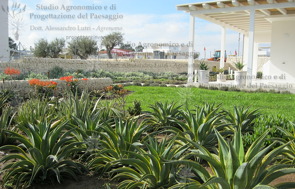 Progettare Il Giardino Da Soli : Progettare il giardino da soli 28 images come progettare un