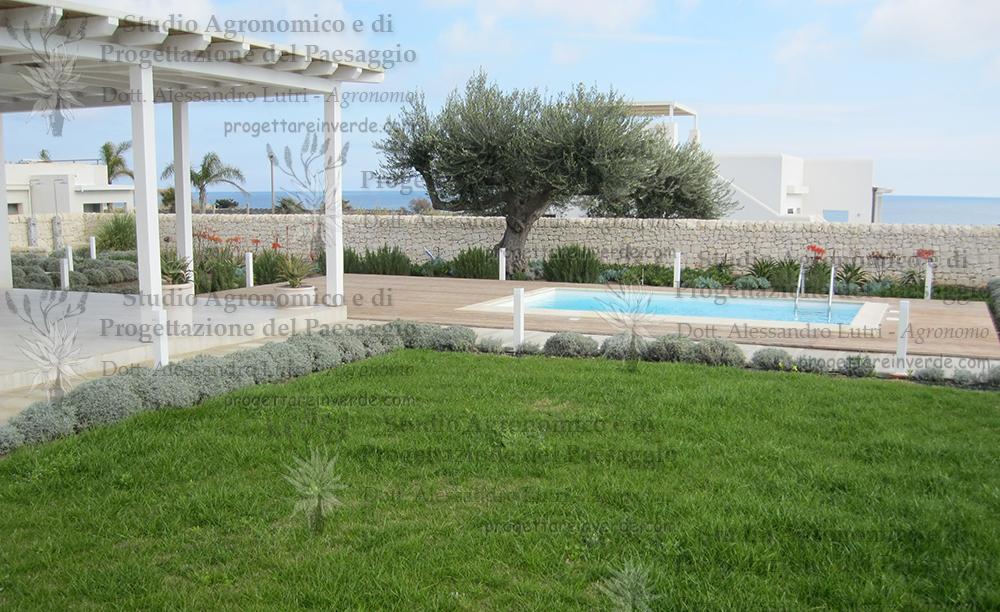 Progettare Il Giardino Da Soli : Prato piscina mare mediterraneo giardino piante