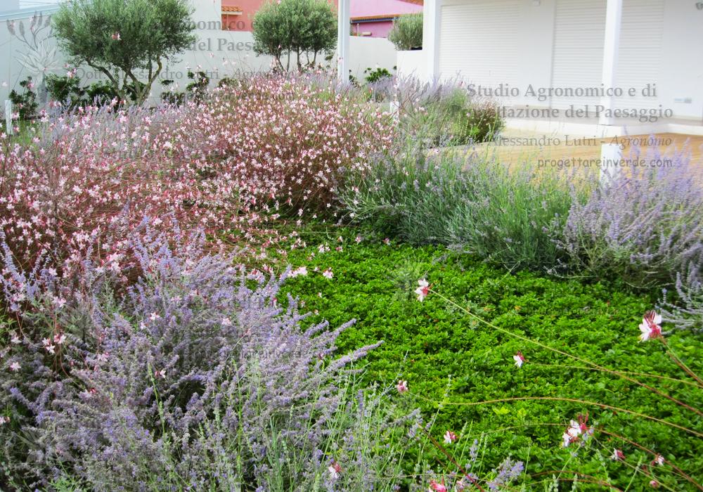 aiuole-giardino