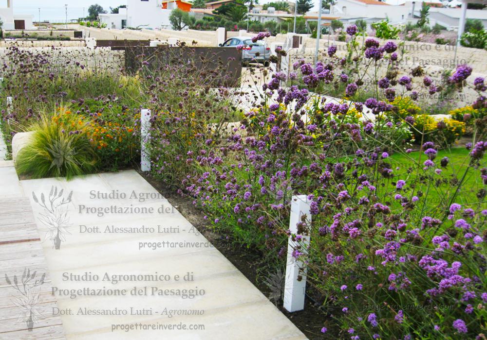 architetto-paesaggista-giardino-mediterraneo-Siracusa