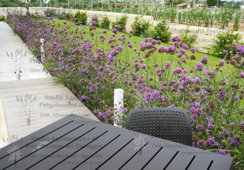 design-giardini-architettura-paesaggistica-agronomo-siracusa