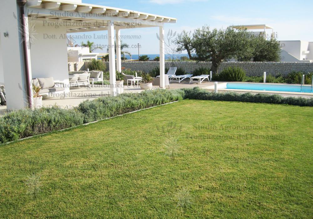prato piscina sedie gazebo olivo mare