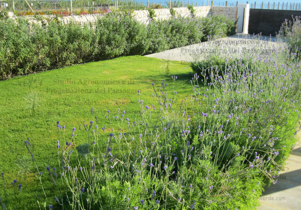 giardino-erbe-aromatiche-prato-Sicilia-design