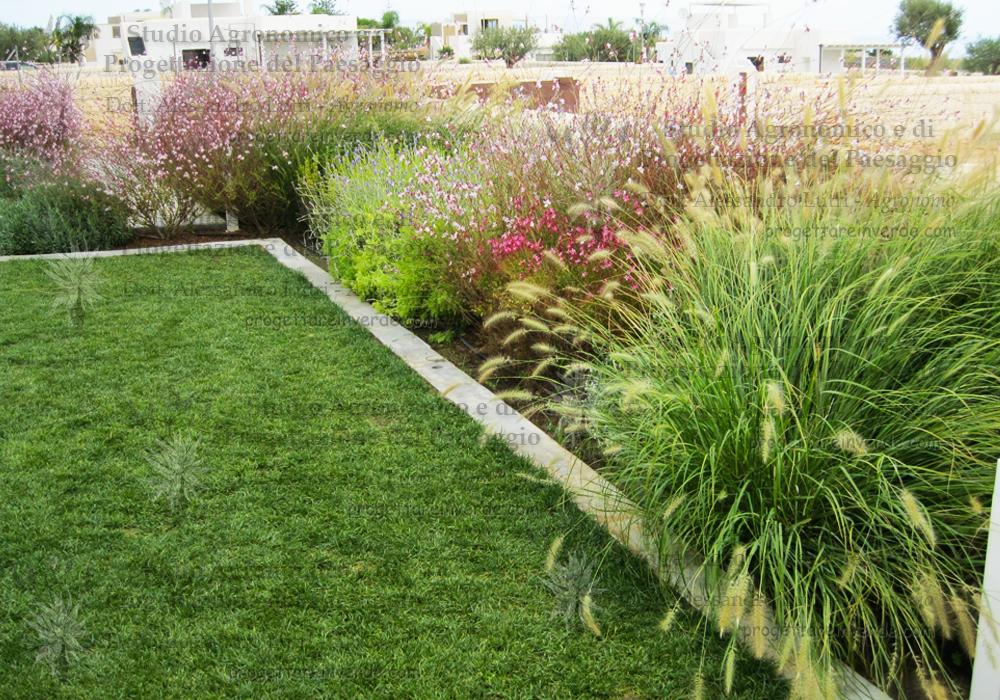 giardino-piante-erbacee-perenni