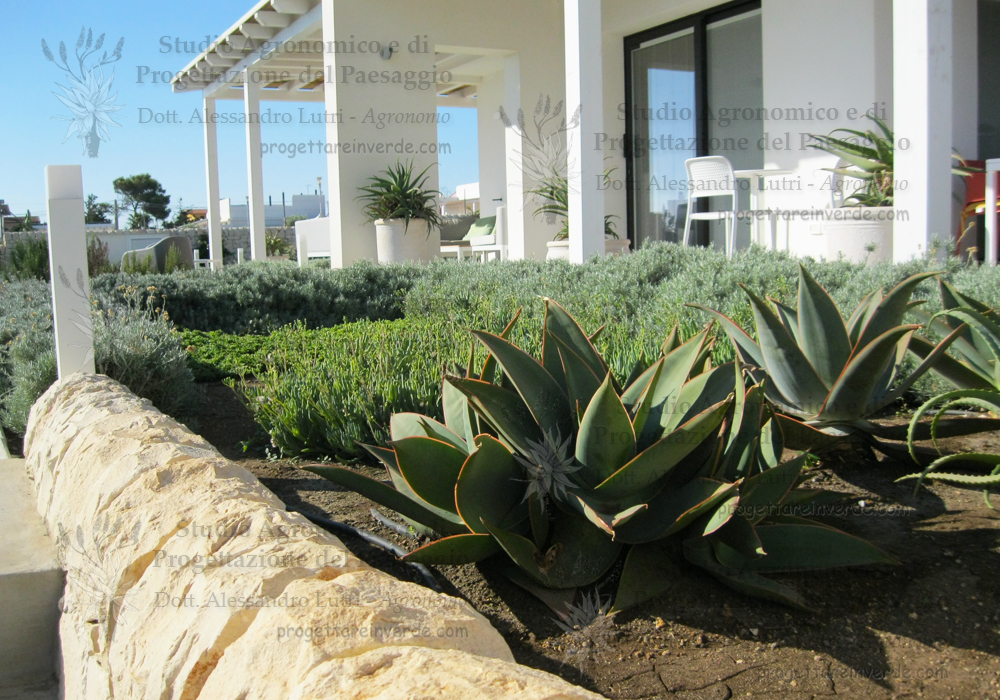 giardino-piante-grasse-Noto-Siracusa