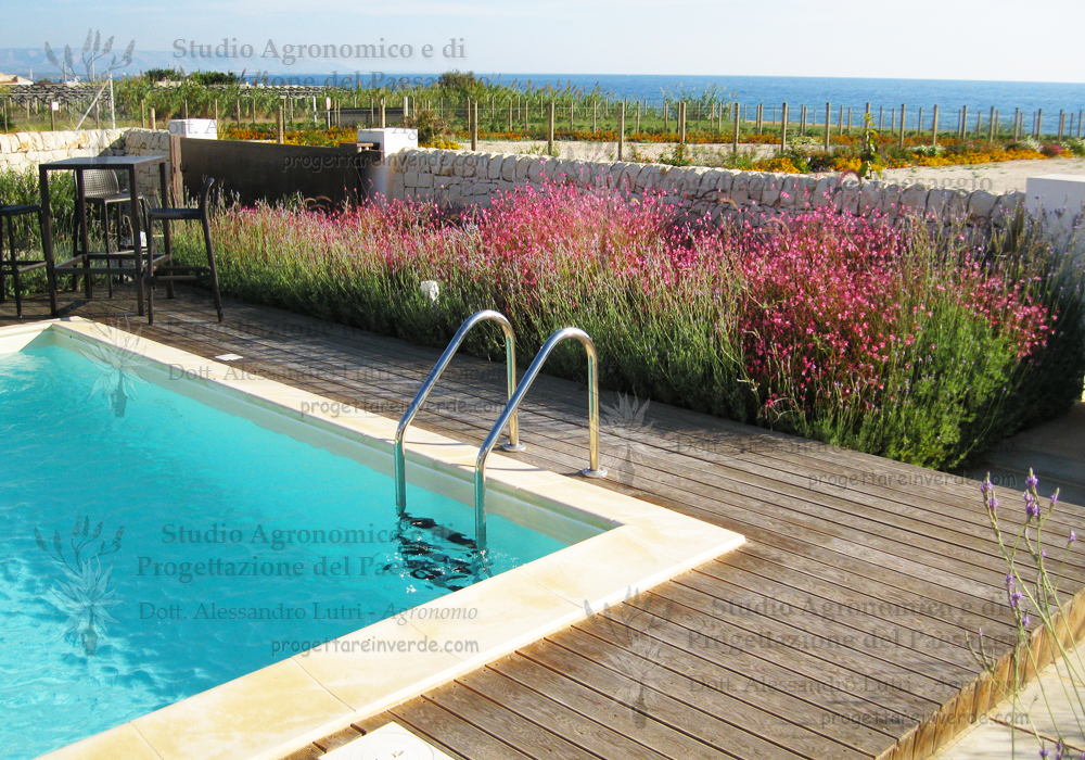 piscina aiuola fiori cancello ingresso
