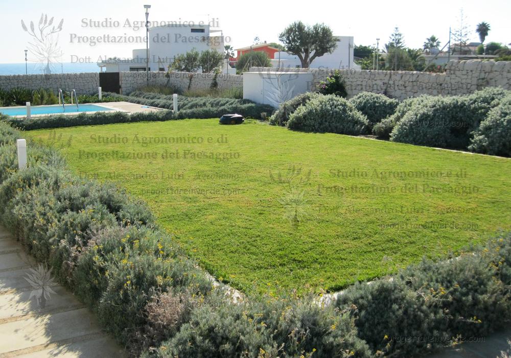 progettazione-gardino-prato-piscina-piante