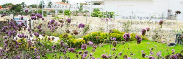 Giardino per villetta siciliana