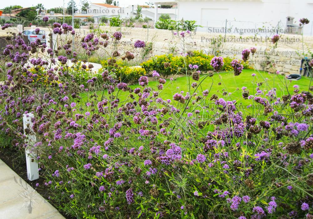 progettazione-giardini-casa-vacanze-sicilia