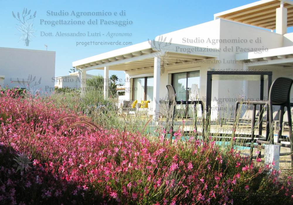 progettazione-giardini-siracusa-sicilia-villa