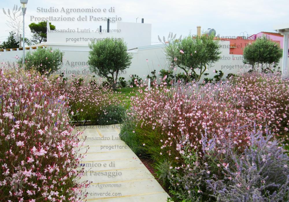 progettazione-giardini-ville-privati