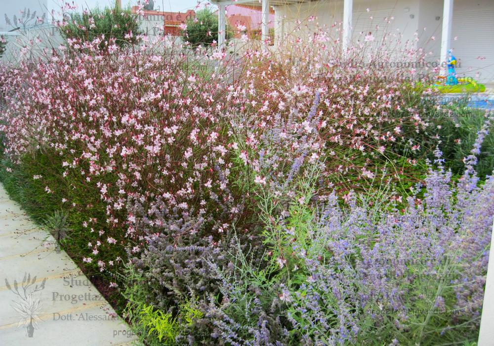 aiuola fiori villa