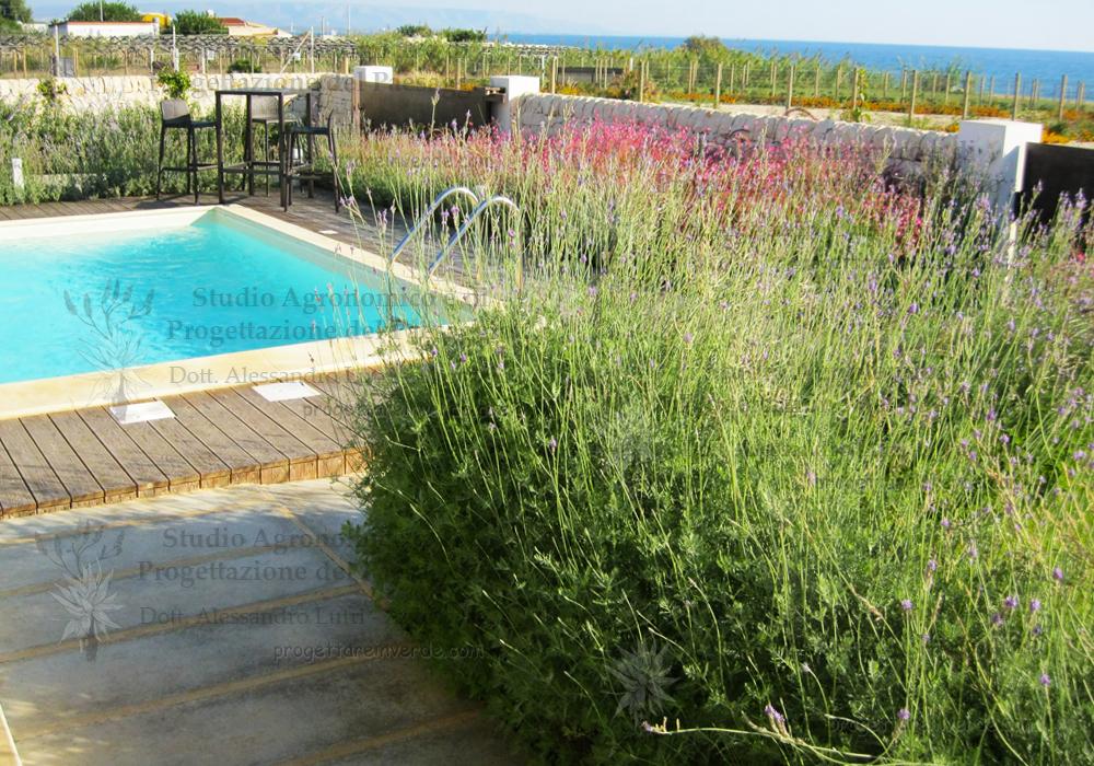 Progettazione giardino piscina aiuole aromatiche for Progettazione aiuole