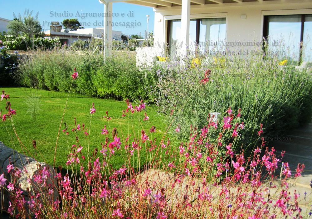 progetto-giardino-BnB-ragusa