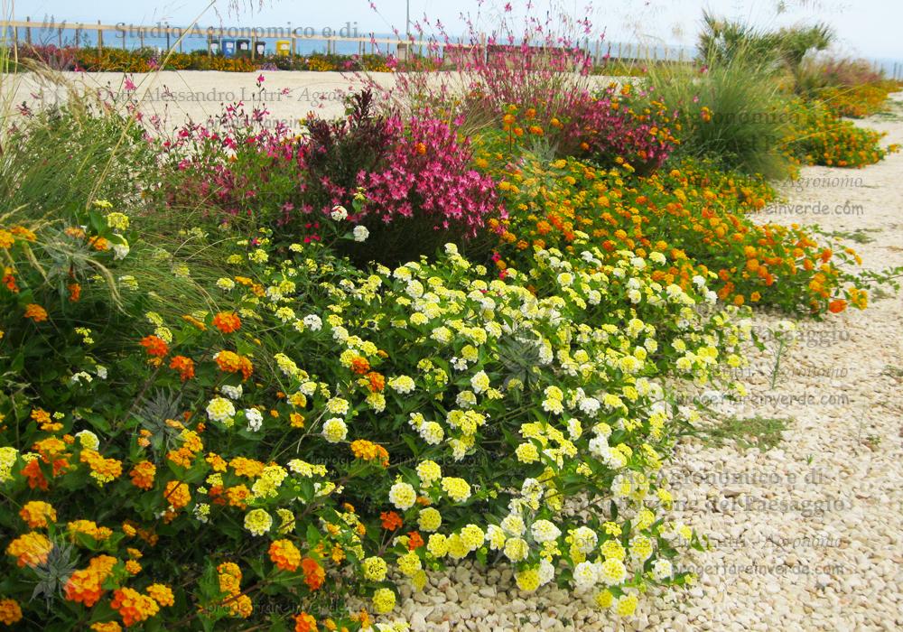 realizzazione-aiuole-fiorite-Sicilia