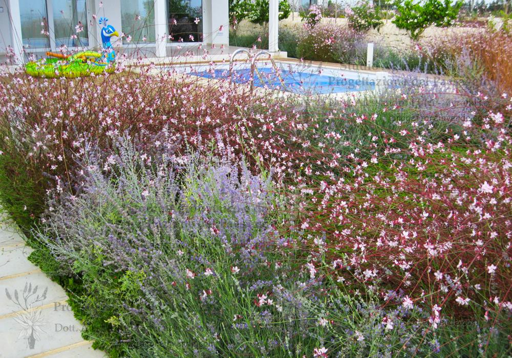 piscina casa giardino