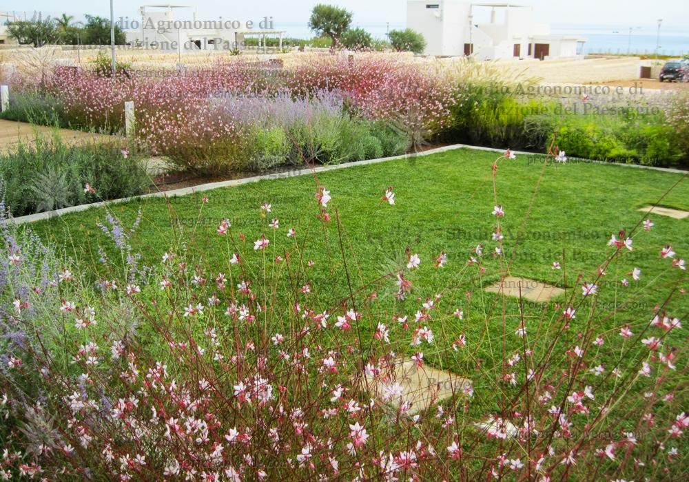 realizzazione-giardino-naturale