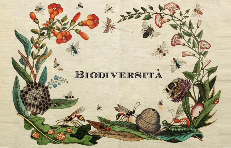 bando conservazione biodiversità